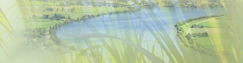 Australian Sugar Cane Farmers Association