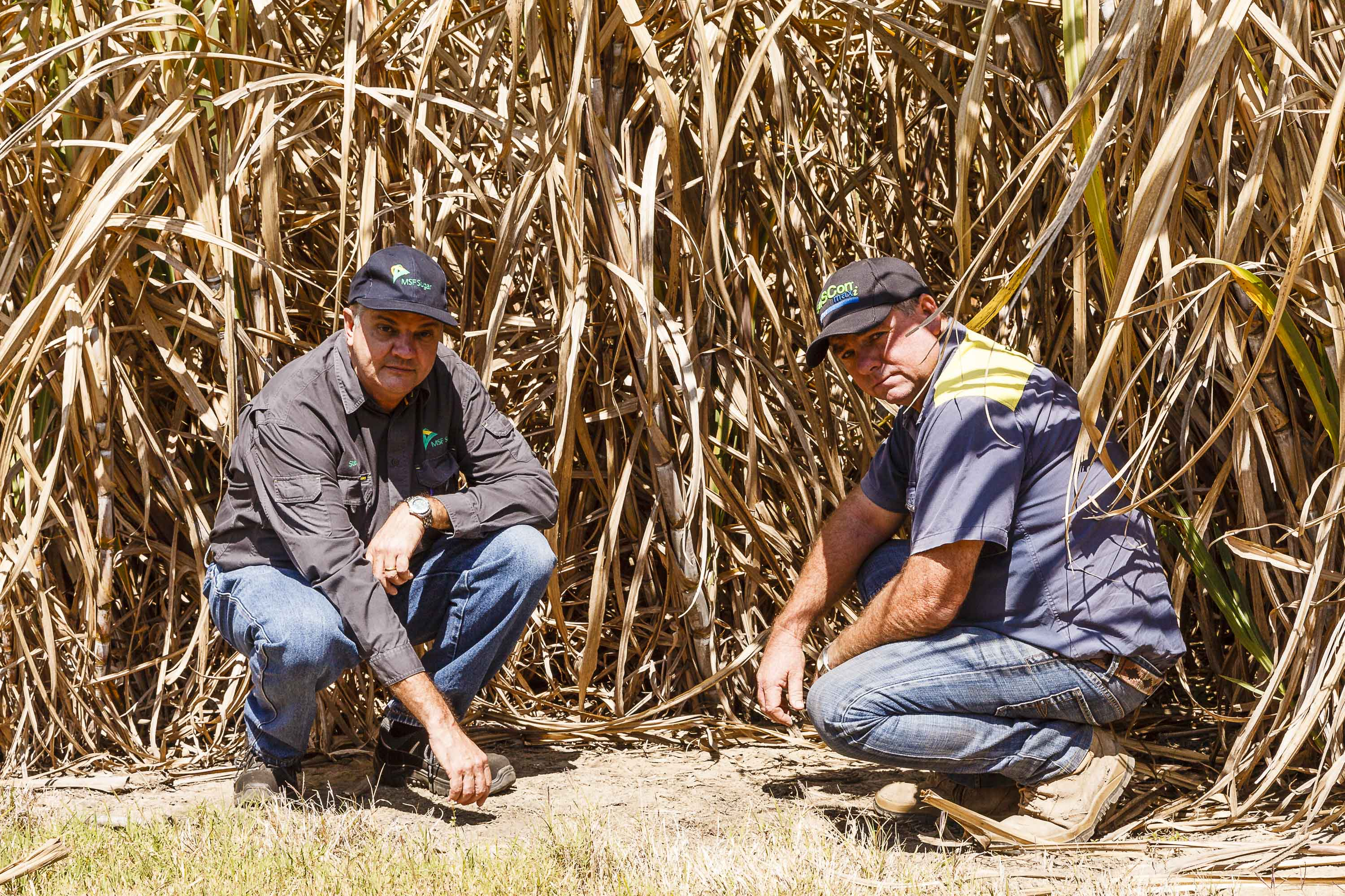 Water Crisis: MSF Sugar General Manager Maryborough Stewart Norton (pictured left) and Maryborough canegrower Jeff Atkinson (pictured right) believe the region's cane industry faces a grim future unless new water storage is built.