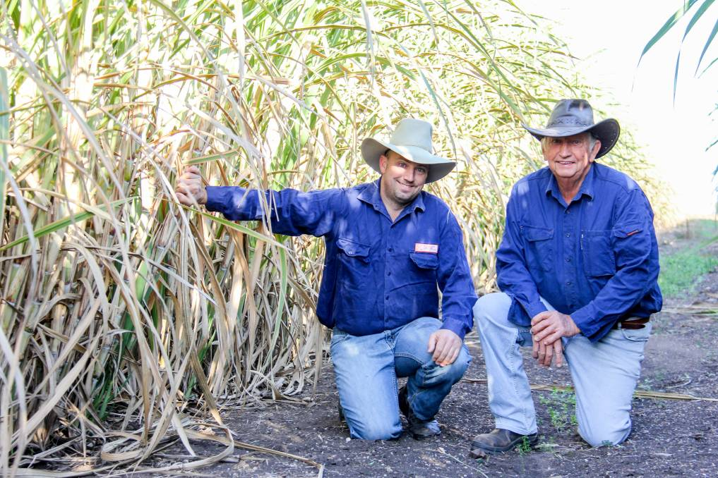 Brendan and Greg Seymour, Carnarvon, Byrnestown, with their first cane crop as part of the Isis Central Sugar Mill feasibility study to grow cane in the Gayndah region.