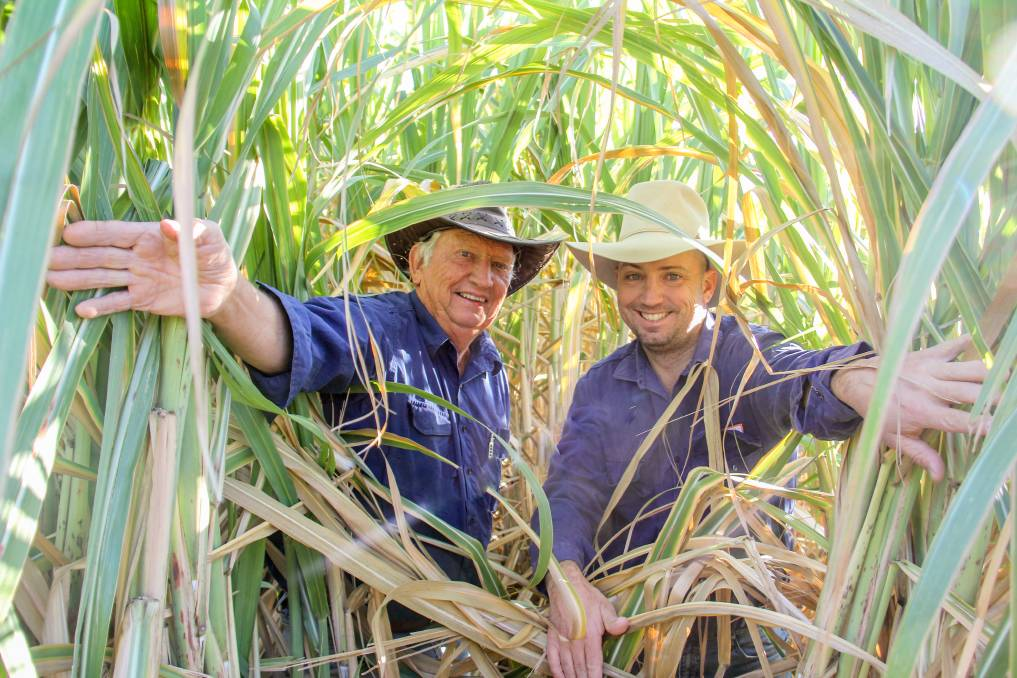 Greg and Brendan Seymour, Carnarvon, Byrnestown, with their cane trial plot. Pictures: Lucy Kinbacher
